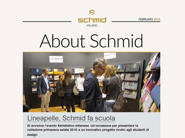 Newsletter-Schmid_600x450